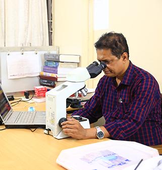 Dr. Khandoker Meskat Hossain